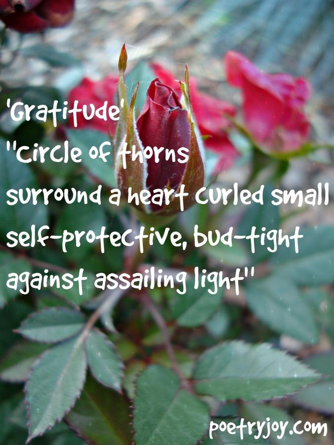 gratitude poem heart unfurls file pin image ~ FMF