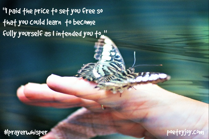butterfly ~ seeking release PJ FMF file image pin