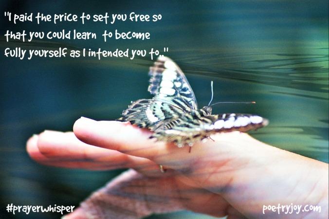 butterfly ~ seeking release PJ FMF file image pin