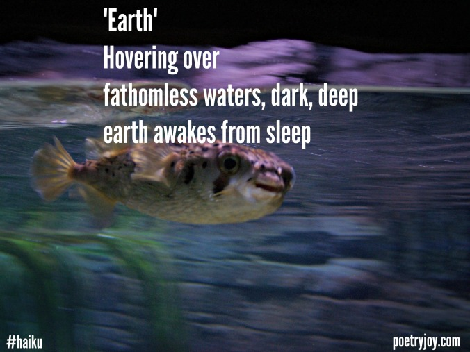 earth haiku file image pin