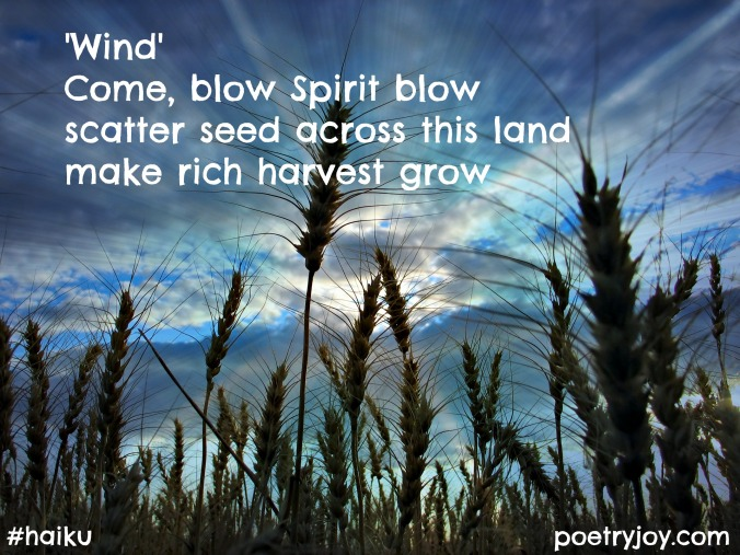 haiku ~' Wind'harvest file image pin