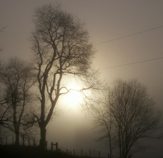 as mist poem image