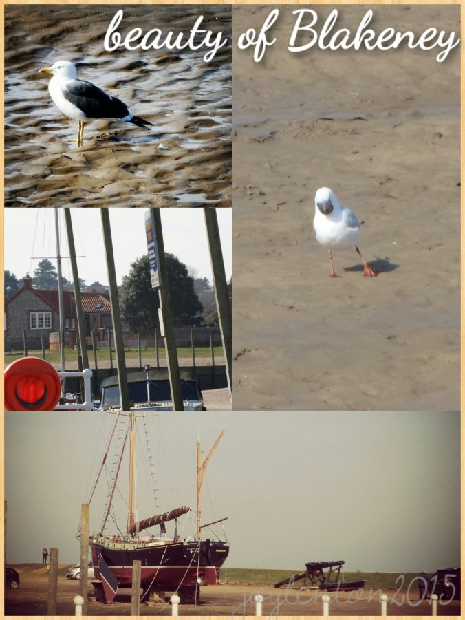 beauty of blakeney collage - PJ