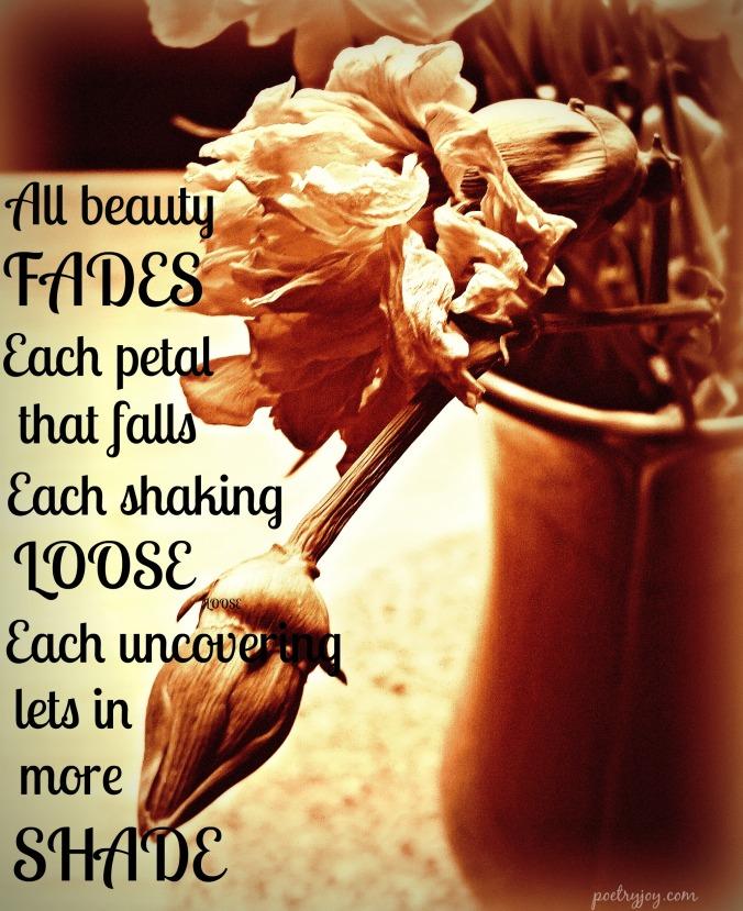all beauty fades PJ poem image 3