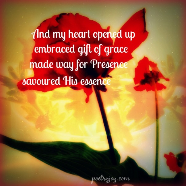 poppy PJ poem pin