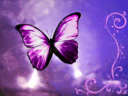 BUTTERFLY symbol for Fibro