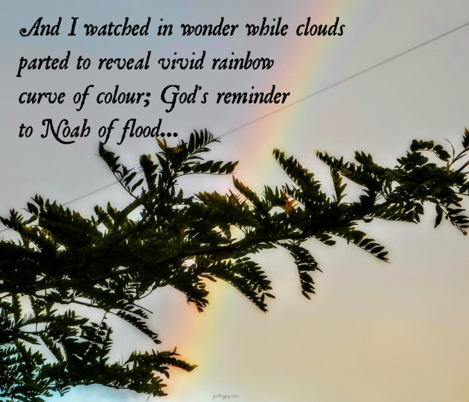 write31days-journeying-into-joy-a-feast-of-grace-gifts-rainbow