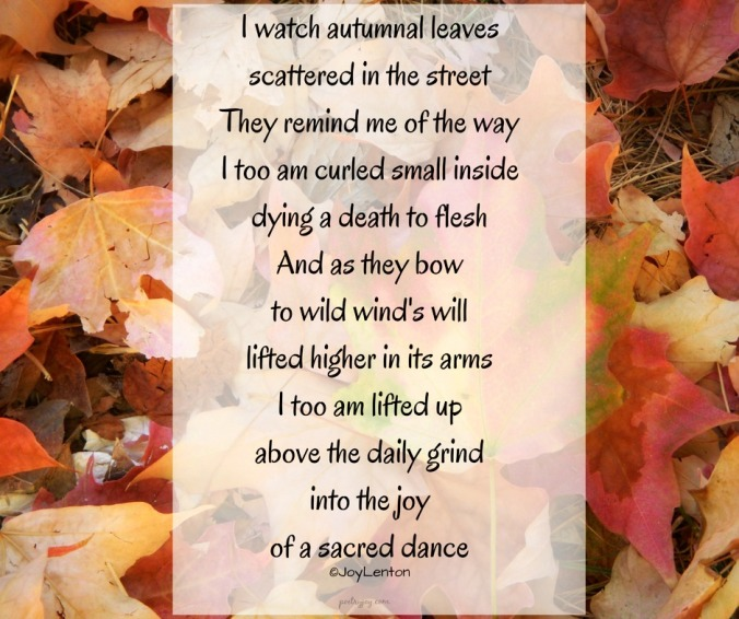 write31days-journeying-into-joy-looking-up-watch-the-wind-poem