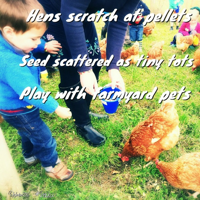 haiku-farmyard-pets