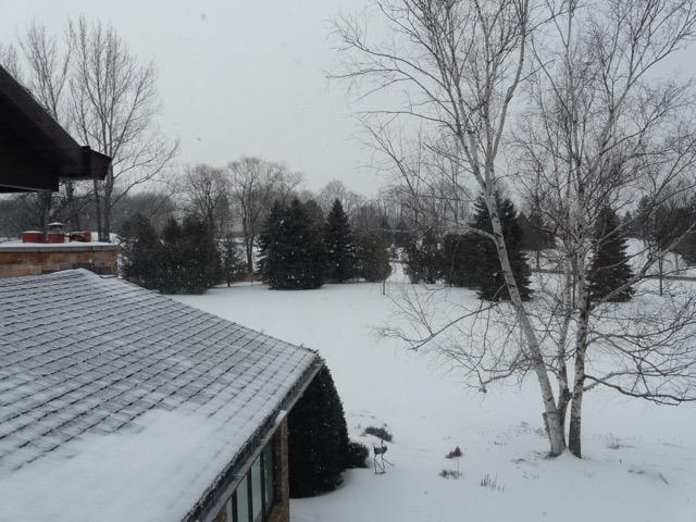 snowy-scene-winter-welcome