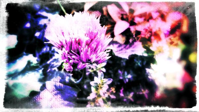 breathe-fmf-poetry-joy