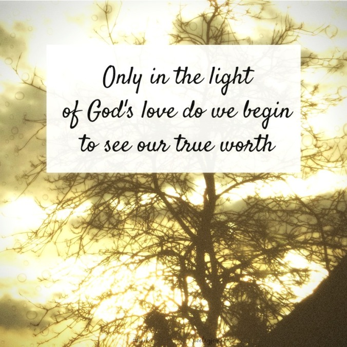 haiku-only-in-the-light-pj