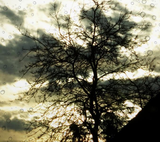 love-and-light-poetry-joy