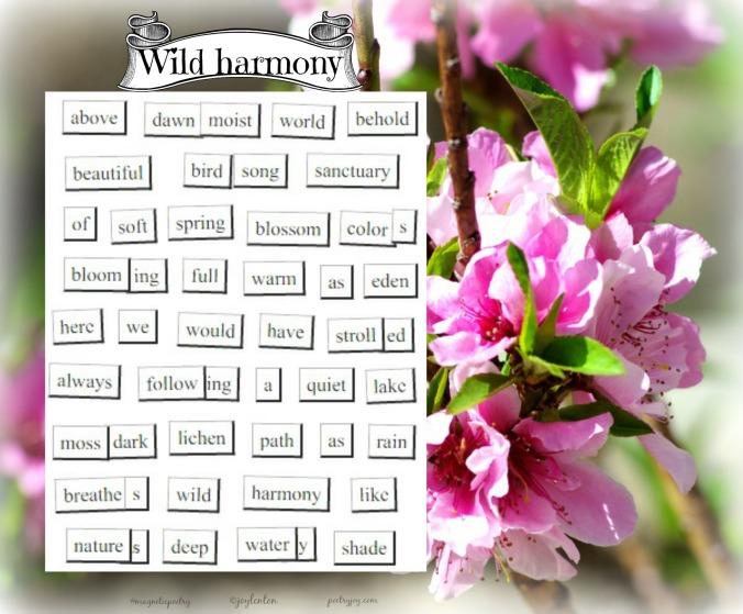 magnetic-poetry-wild-harmony-nature-set-pj