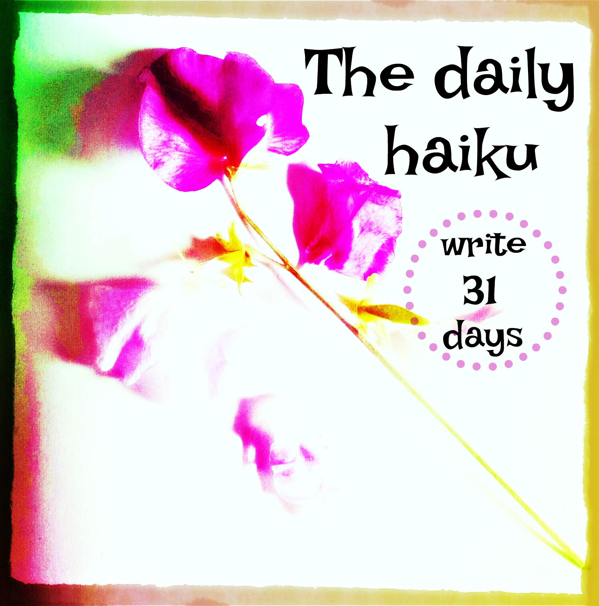Nuggets Meaning In Urdu: Haiku: Introducing The Daily Haiku