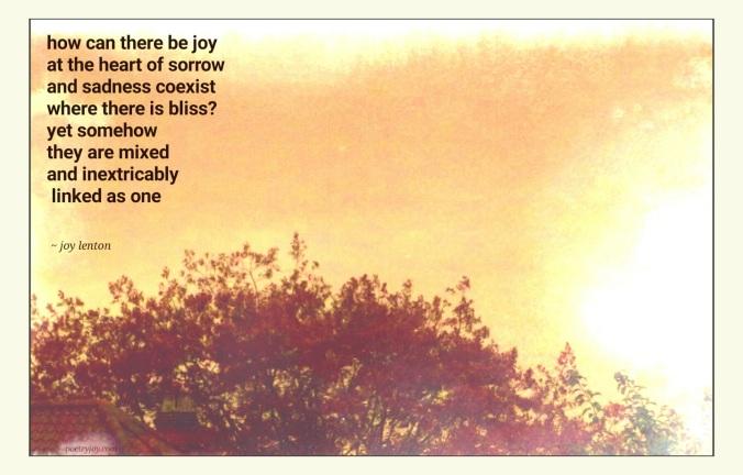 haiku   Poetry Joy