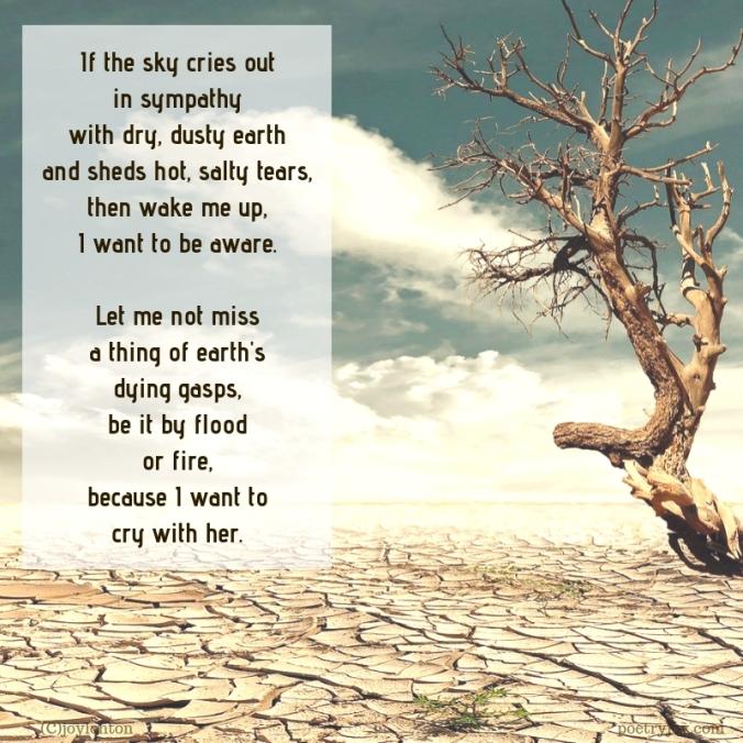 simplify - lament for earth poem excerpt (C)joylenton @poetryjoy.com