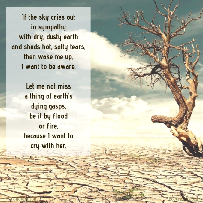 simplify - lament for earth poem excerpt (C)joylenton @poetryjoy.com