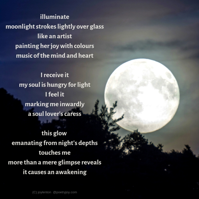 silvery moon - trees - touch - benediction poem excerpt (C) joylenton @poetryjoy.com