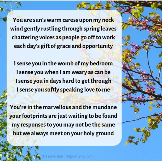 opportunity - sensing presence poem excerpt (C) joylenton @poetryjoy.com