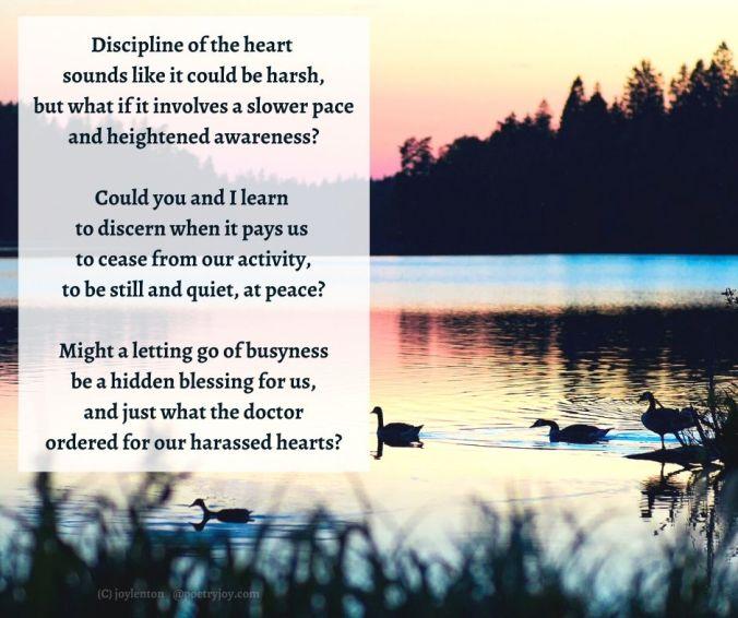slow - swans on a lake at sunset - heart work poem excerpt (C) joylenton @poetryjoy.com