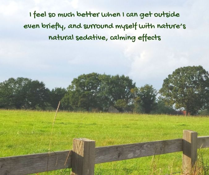 nature - countryside - grass - sky - trees - natural sedative effects quote (C) joylenton @poetryjoy.com