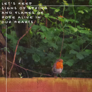 nature - robin on a fence - Let's keep signs of spring quote (C) joylenton @poetryjoy.com