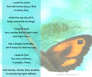 window - butterfly - longings poem excerpt (C) joylenton @poetryjoy.com