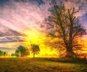 enchantment - sky - trees - landscape - sunset - regaining our sense of wonder and awe @poetryjoy.com