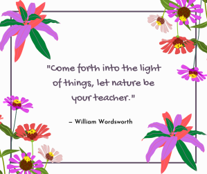 hope - Come forth into the light of things, let nature be your teacher - quote @poetryjoy.com
