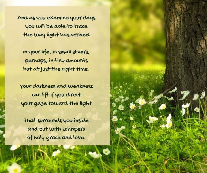 light - sun - meadow - flowers - light is here poem excerpt (C) joylenton @poetryjoy.com