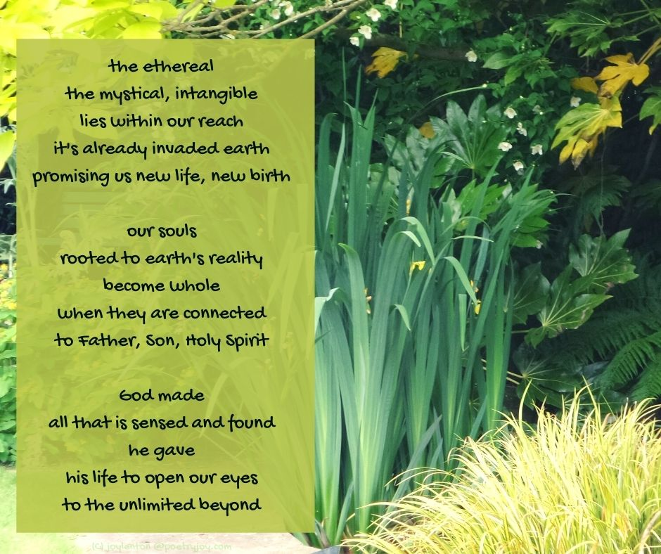 reality - garden - pond - leaves - our souls rooted to earth's reality become whole (C) joylenton @poetryjoy.com
