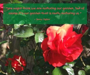 summer - our garden nurturing us quote by Jenny Uglow @poetryjoy.com