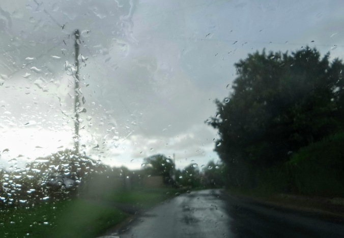 hope - rain - trees - countryside - car window view - when whispers reach us in the darkness (C) joylenton @poetryjoy.com